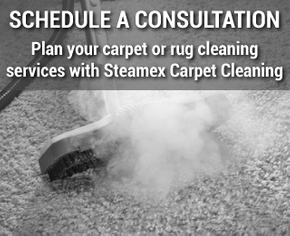 Schedule a Consultation | Plan your carpet or rug cleaning services with Steamex